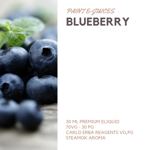 Paint e-Juices - Blueberry ( Yaban Mersini ) Likit