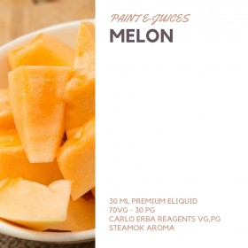 Paint e-Juices - Melon ( Kavun ) Likit